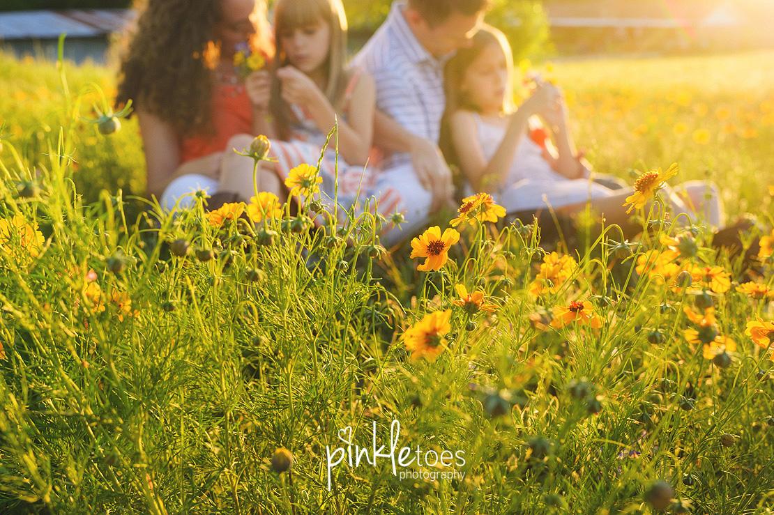 austin-pflugerville-round-rock-georgetown-lifestyle-family-photographer-texas-wildflowers-21
