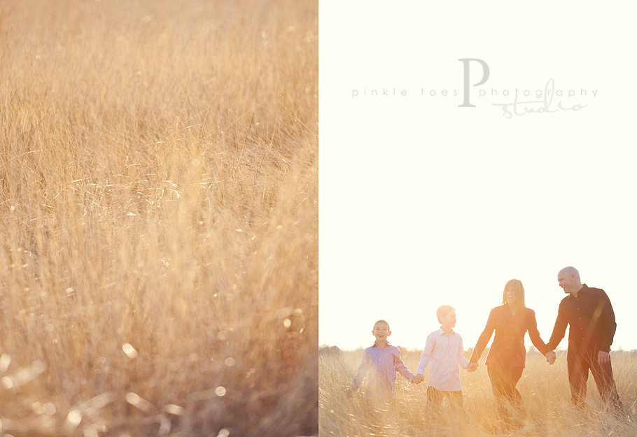 fields_austin_family_photographer.jpg