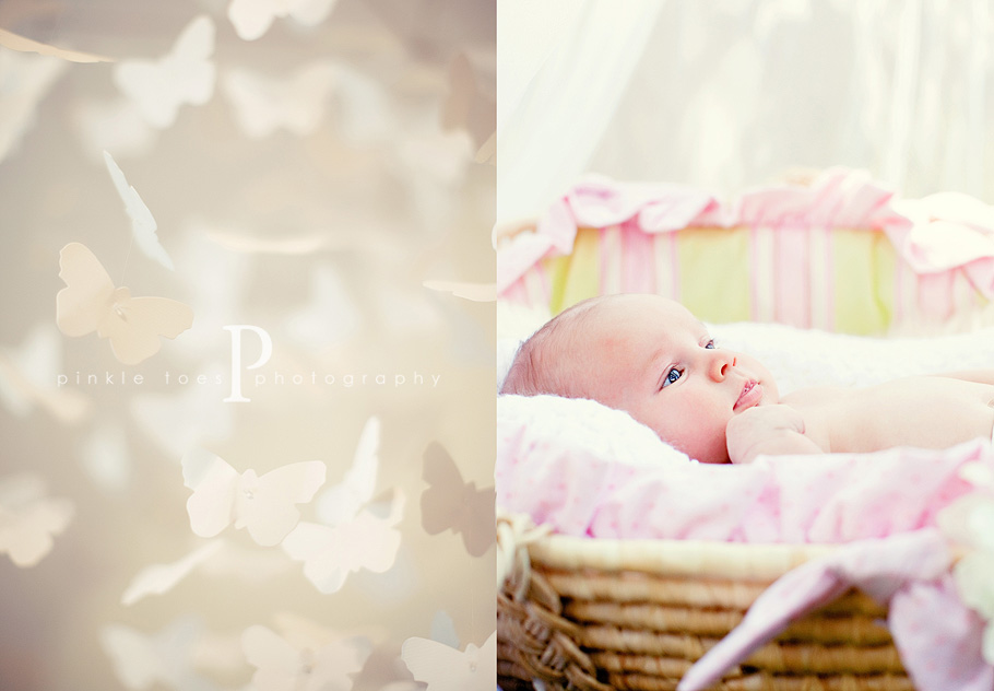 sw_austin_newborn_photographer.jpg